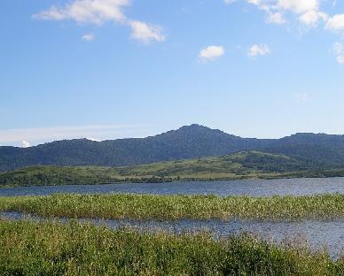 Горная Колывань 2006 · Лесные покатушки